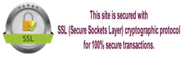 SSL secured site